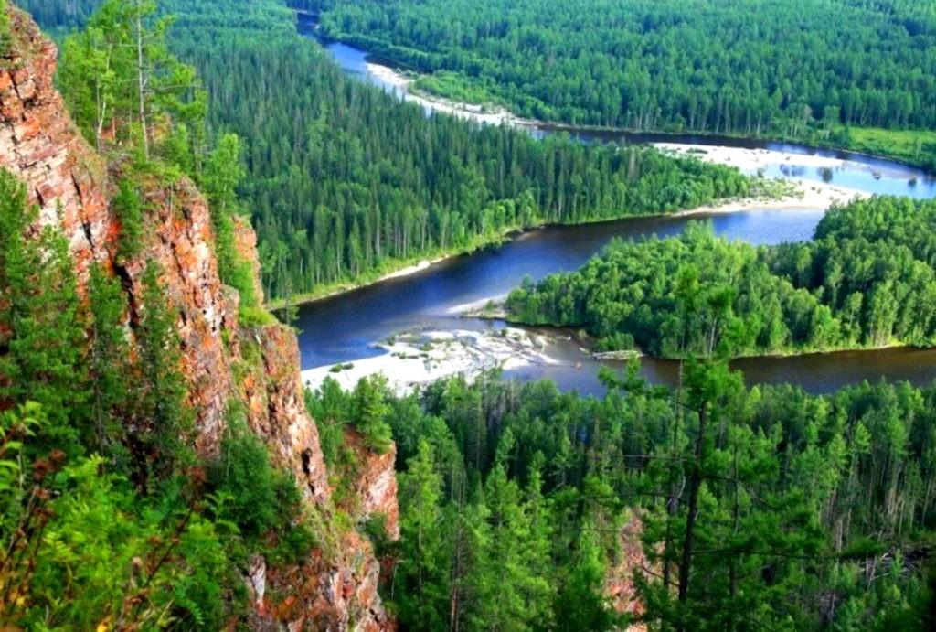 Сибирская тайга