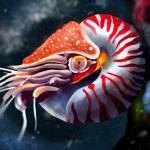 Самые древние существа на Земле – обитающие по сей день