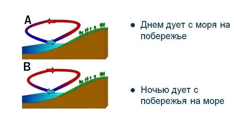 Схема образования морского бриза