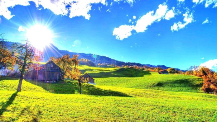 Солнечные дни