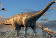 Самые большие динозавры