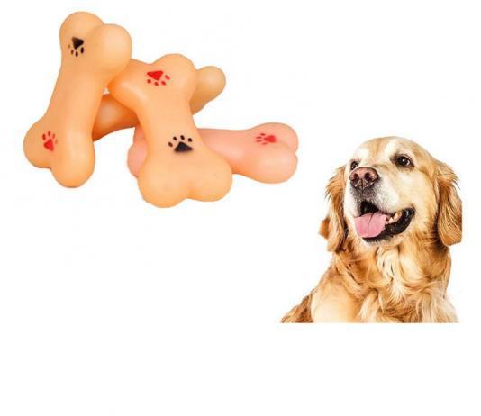 Почему собаки любят кости