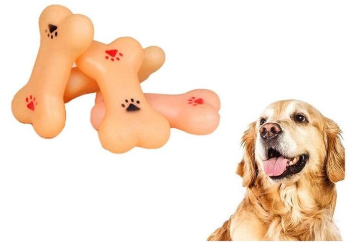 Почему собаки любят грызть кости?