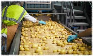 Фильтрация картофеля