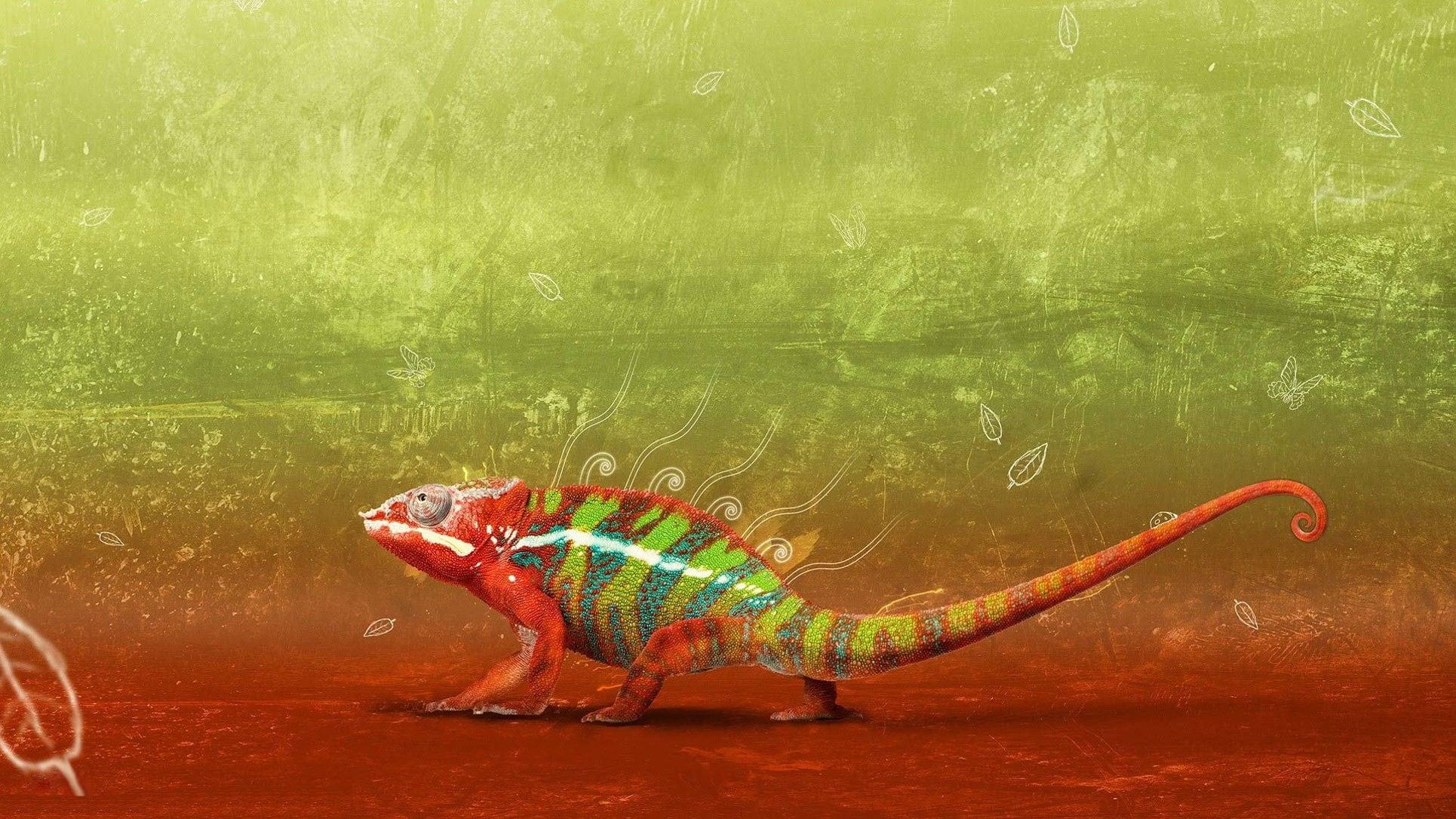 Самые опасные ящерицы в мире