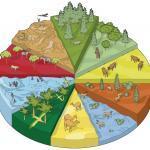 Что значит понятие – среда обитания