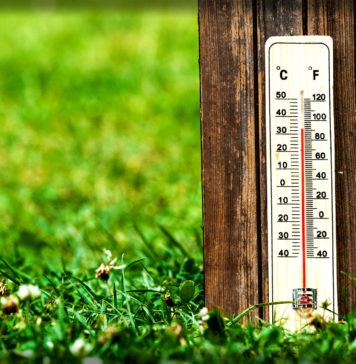 Есть ли температурные шкалы, кроме Фаренгейта, Цельсия и Кельвина?