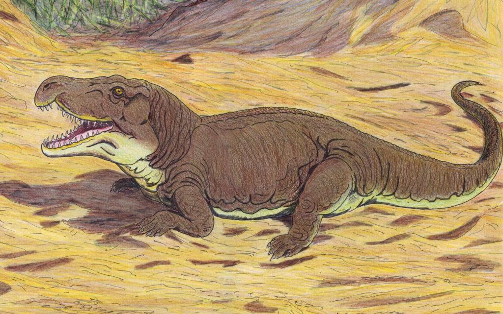Рисунок тектодонта - предка крокодила
