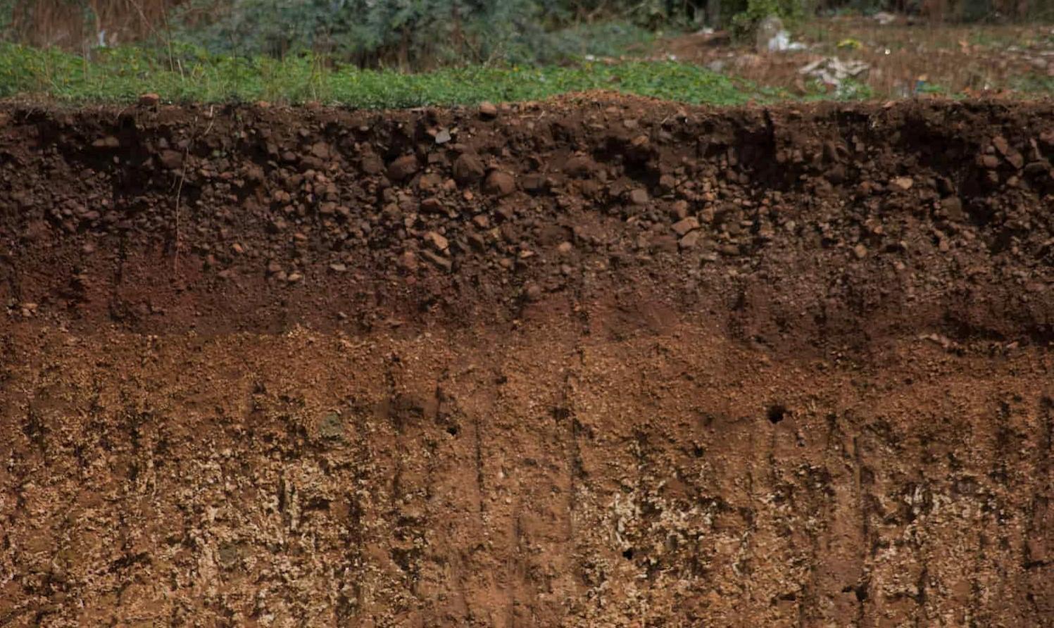 Какова толщина плодородного слоя Земли?
