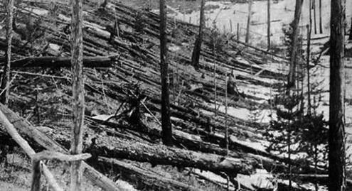 Последствия Тунгусского метеорита