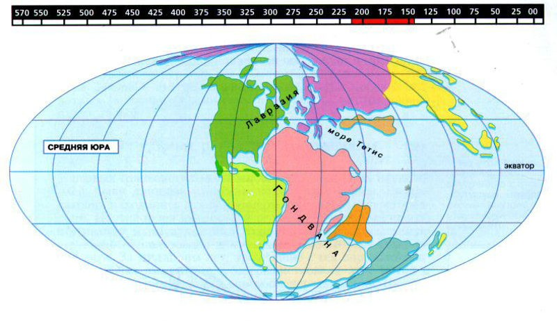 Континенты в юрский период