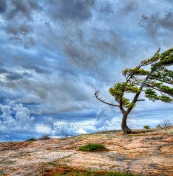 Может ли ветер дуть сразу с двух сторон?