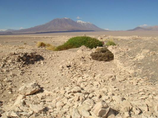 Вулкан - Сан-Педро и Серо-Парини