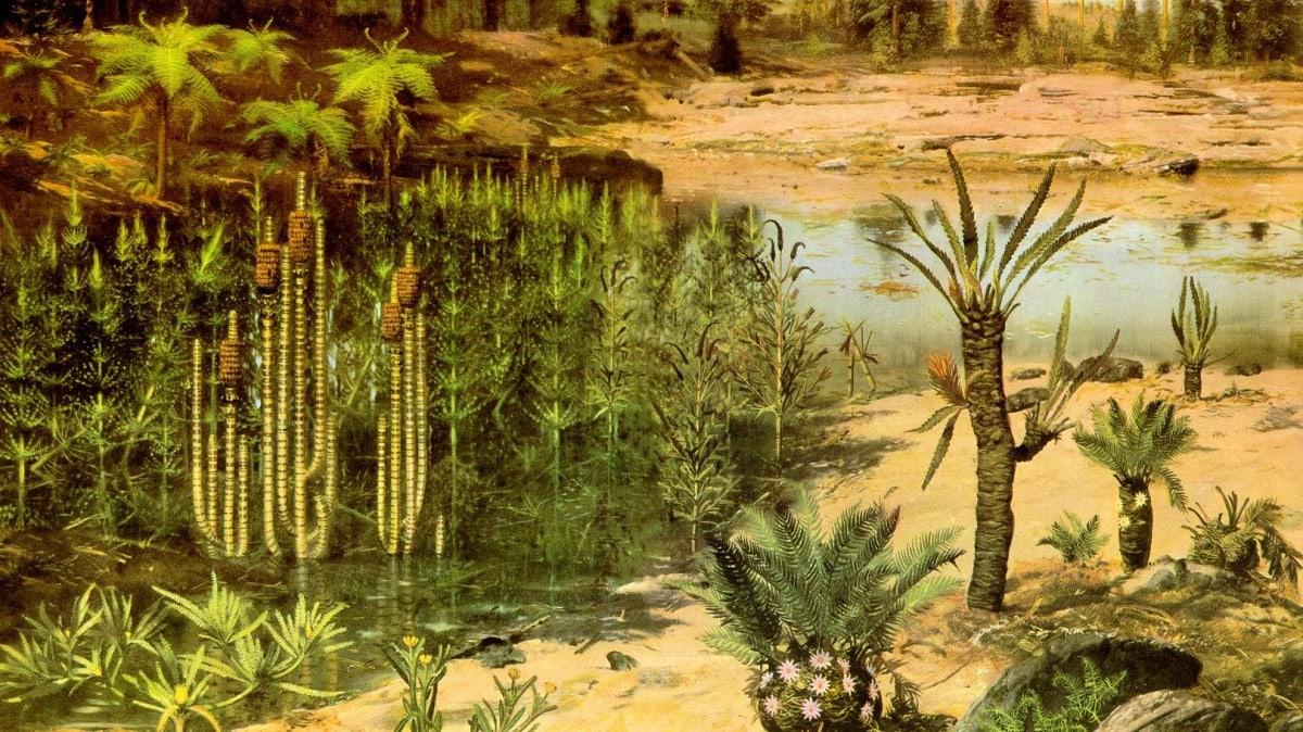 Древние растения
