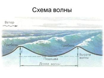 Строение волны