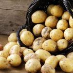 Почему при варке картофель рассыпается?