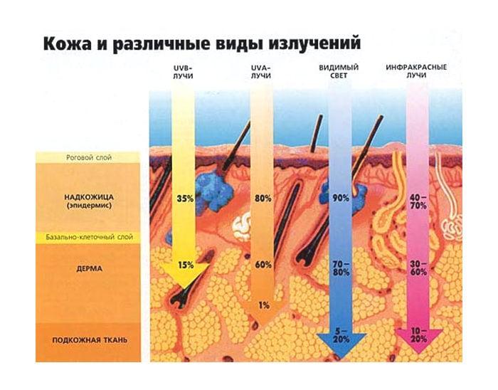 Воздействие солнечных лучей на кожу
