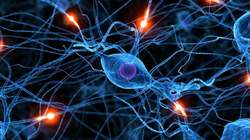 Нейронная сеть